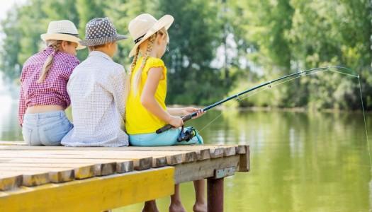 Can fish oil improve children's behaviour?