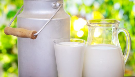 Is organic milk worth it?