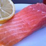 salmonlemon2